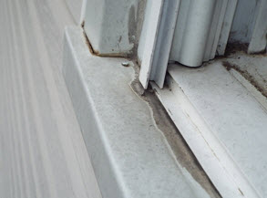 Mold Outside A NJ Home | Regal Home Inspections