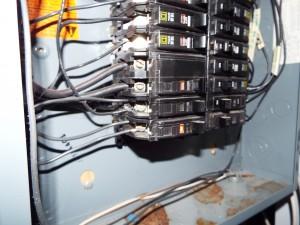 DSCF6011